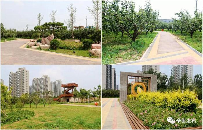 十一个新建公园最近进展